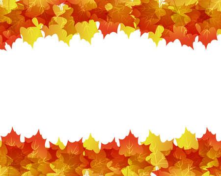 fallen leaves: maple background