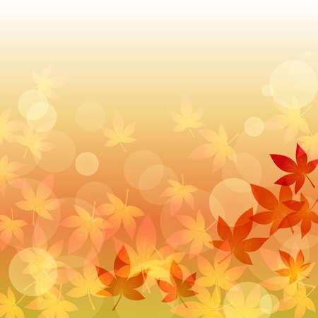 brightness: maple in the brightness