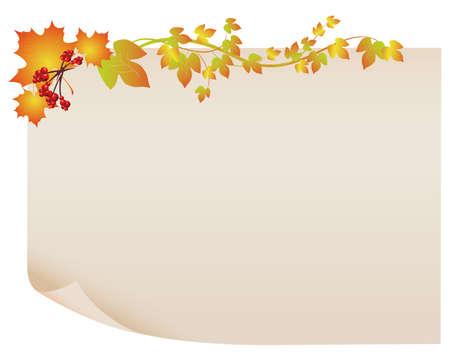 fallen leaves: maple paper frame Illustration