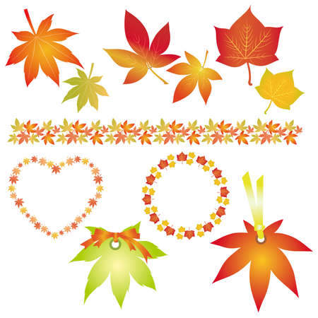 set of fallen leaves Stock Vector - 12482545