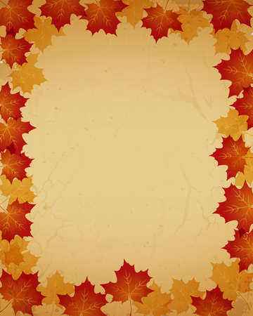 old paper background with maple Stock Vector - 12482772