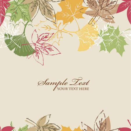 ginkgo leaf: allen leaves background of autumn