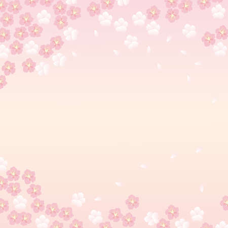 japanese apricot: japanese flower background