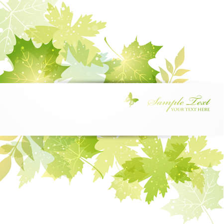 green leaves background Illustration