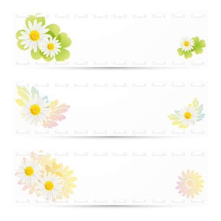 daisies background set Vector