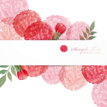 carnation background Vector