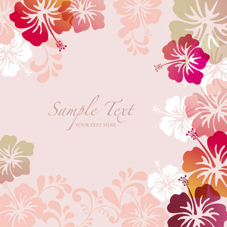 hibiscus flowers: hibiscus background Illustration