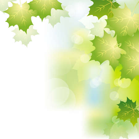 green leaves background 일러스트