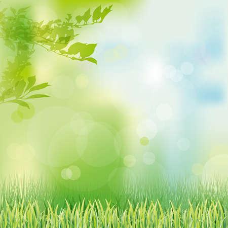 erba sfondo verde Vettoriali