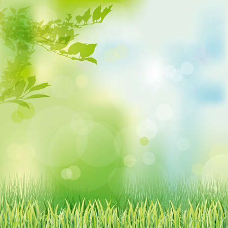 herb garden: green grass background