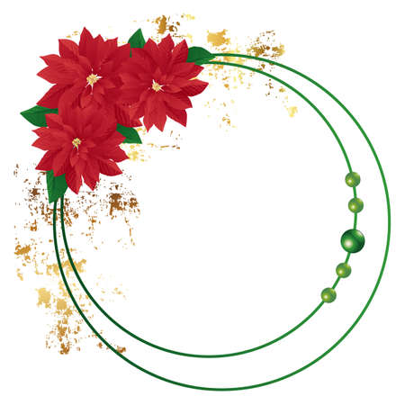cosmos flowers: poinsettia frame