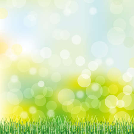 green grass background Stock Vector - 13466196