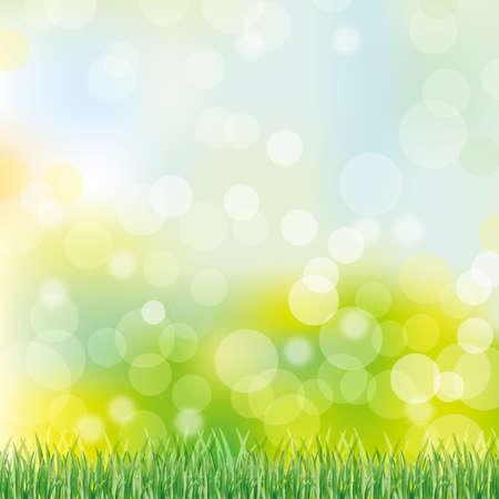 zielonym tle trawy Ilustracje wektorowe