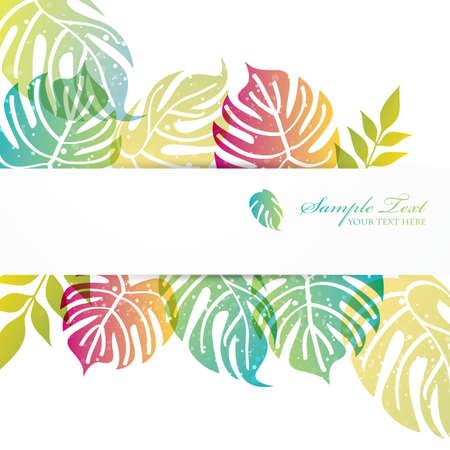 monstera leaf: monstera background