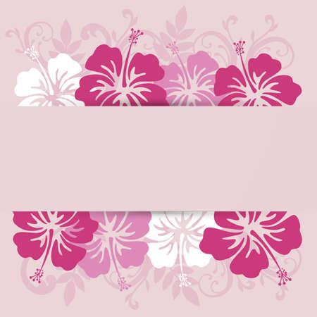 hibiscuses background frame Illustration