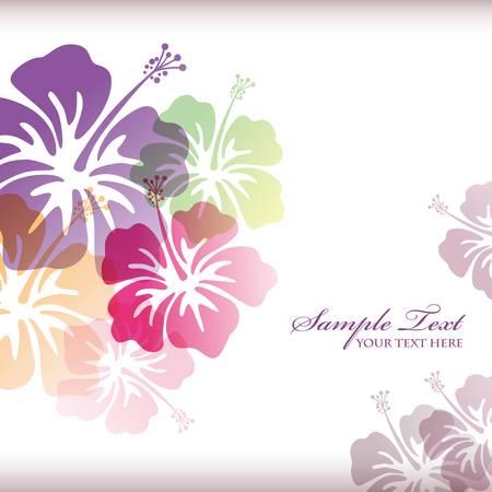hibiscus flower: hibiscus background Illustration