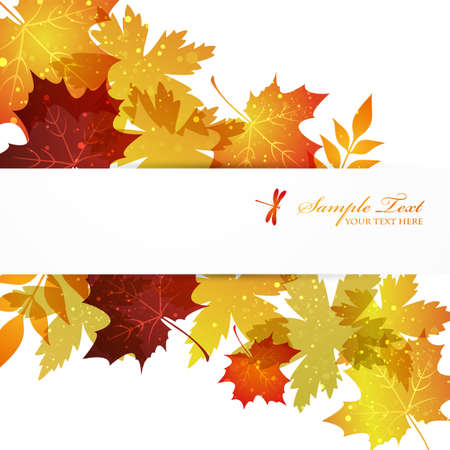 maple background Stock Vector - 14353986