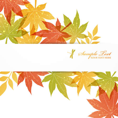 leaf insect: maple background