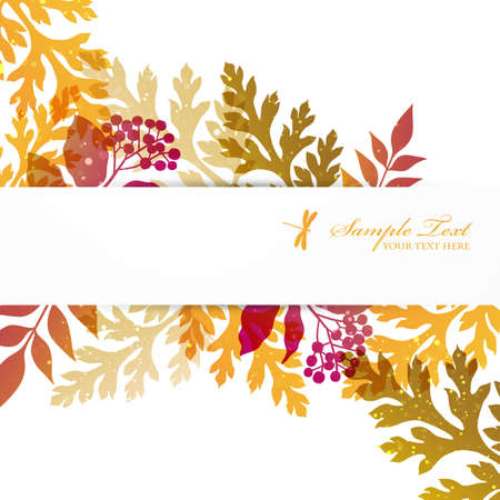 seed and plant background Stock Vector - 14533738