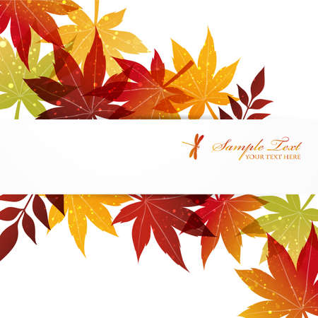 maple background Stock Vector - 14603739