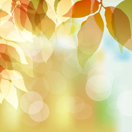 fallen leaves background Vectores