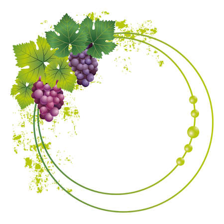 grape frame Vector