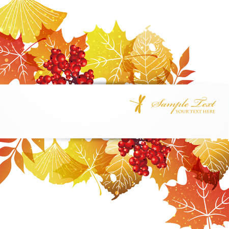 fallen leaves background Vector