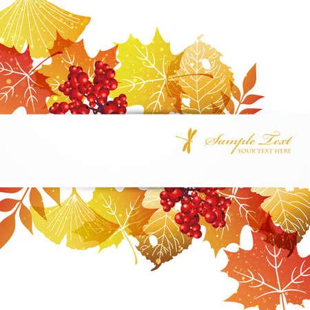 fallen leaves background Stock Vector - 15175008