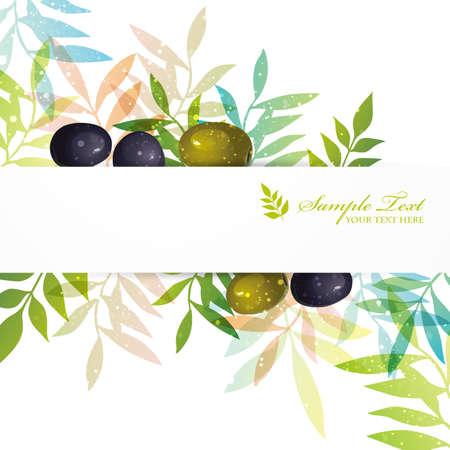 aceite de oliva: fondo de oliva Vectores