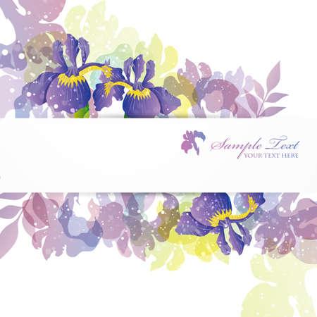 iris fiore: bandiera sfondo dolce