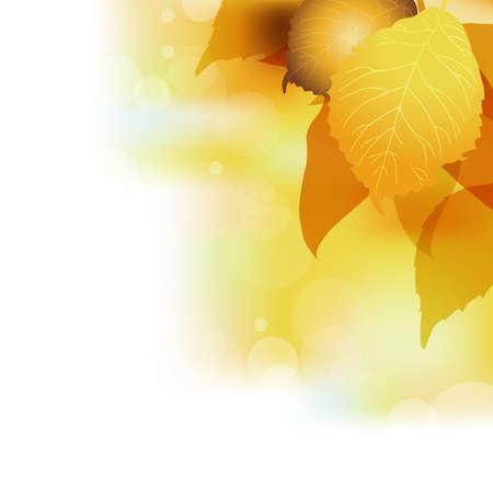 fallen leaves background Stock Vector - 15252114
