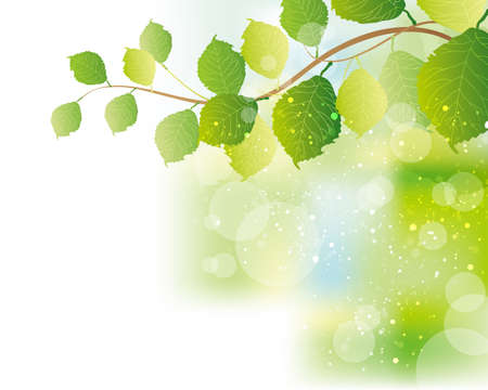 green cute: green leaves background Illustration