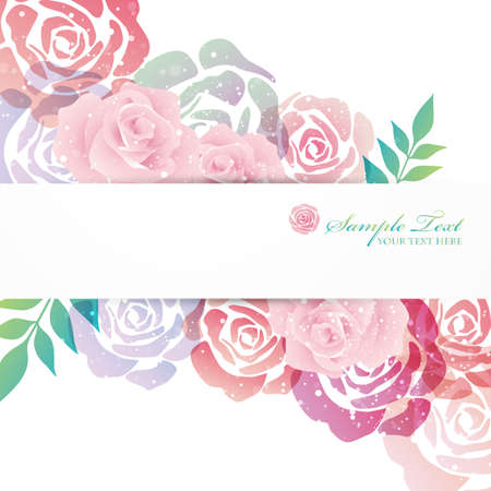 rose garden: rose background
