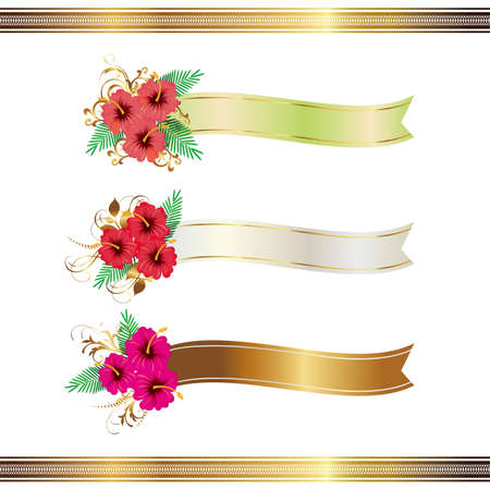 points of interest: hibiscus and ribbon Illustration