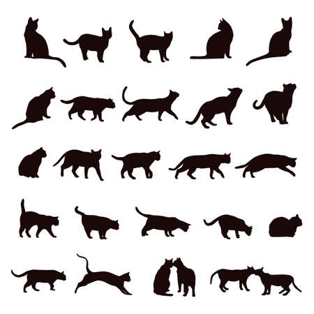 cat illustration: cat set