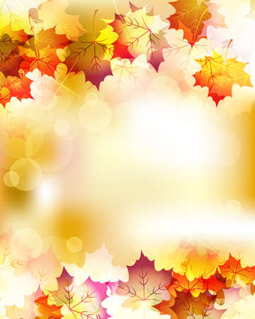 fall leaves: maple background