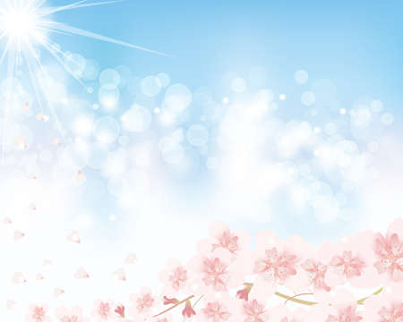 cherry blossom and blue sky background