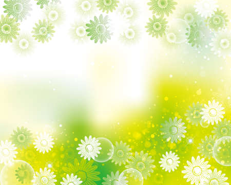 background of daisy 일러스트