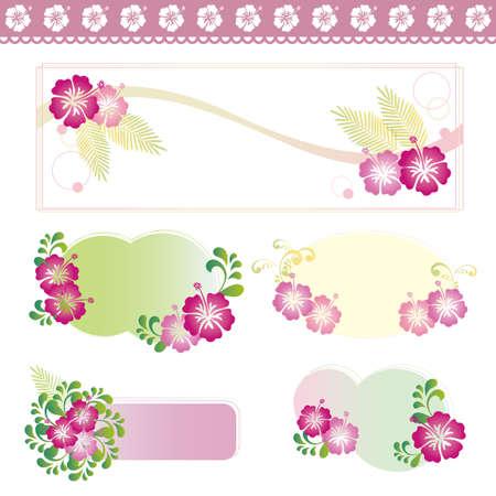 Hibiscuses のセット 写真素材 - 81696181