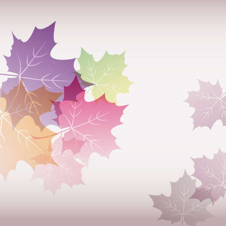 vector illustration background of maple