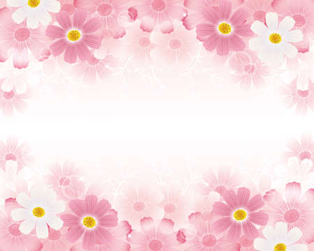 Autumn background with cosmos flowers