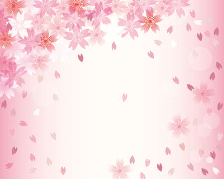 background of a shower of cherry blossoms