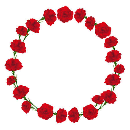 circle frame of carnations illustration Vectores