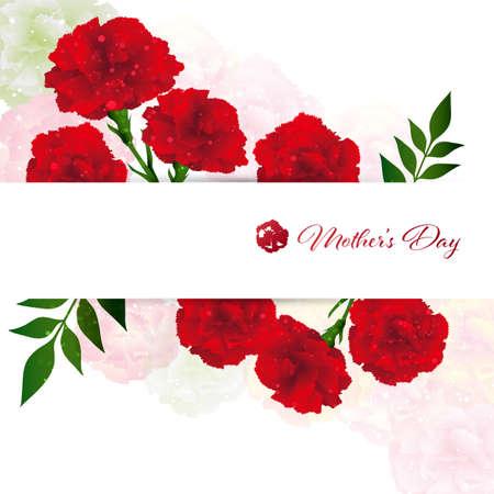 background illustration of carnations