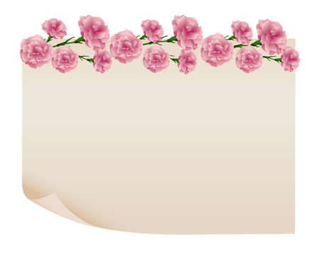 background of carnations illustration with old paper Foto de archivo - 142527011