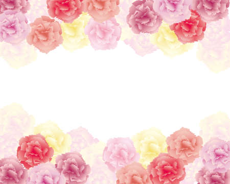 background illustration of colorful carnations