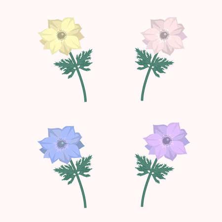 vector floral set with different color anemone flowers Illusztráció