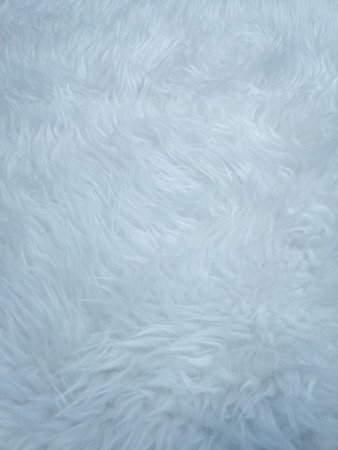 Schöne weiße Federn Texturen Hintergrund und Tapetenkunst