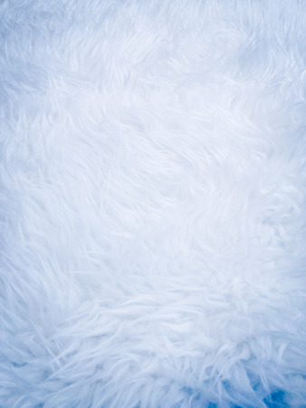 Wool feather background, texture and wallpaper 写真素材