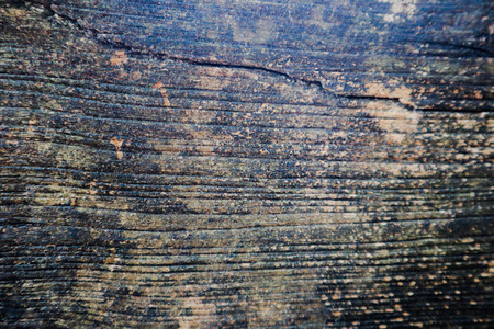 Beautiful rock wood and stone abstract texture background and wallpaper Standard-Bild